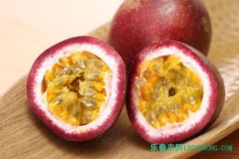 高安百香果种植